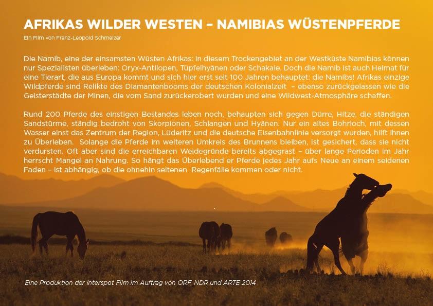 Wuestenpferde in Namibia Filmbeschreibung